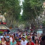 Las Ramblas street (Barcelona): Monuments, museums squares and markets to visit in La Rambla de Barcelona
