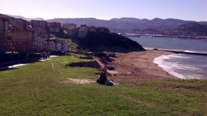 beach and grass