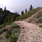 Monuments and nature in Gran Canaria: Las Palmas de Gran Canaria, Roque Nublo and other inland towns (Canary Islands)
