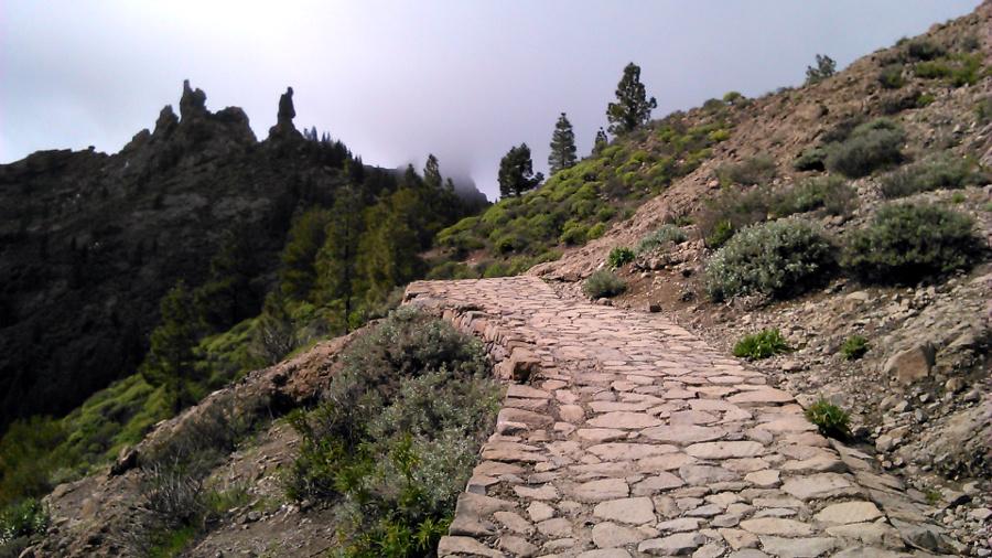 camino roque nublo