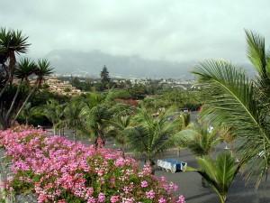 playa jardin flores